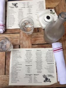 The menu at Terra Tribeca.