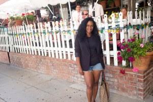 The Paparazzi White Fence